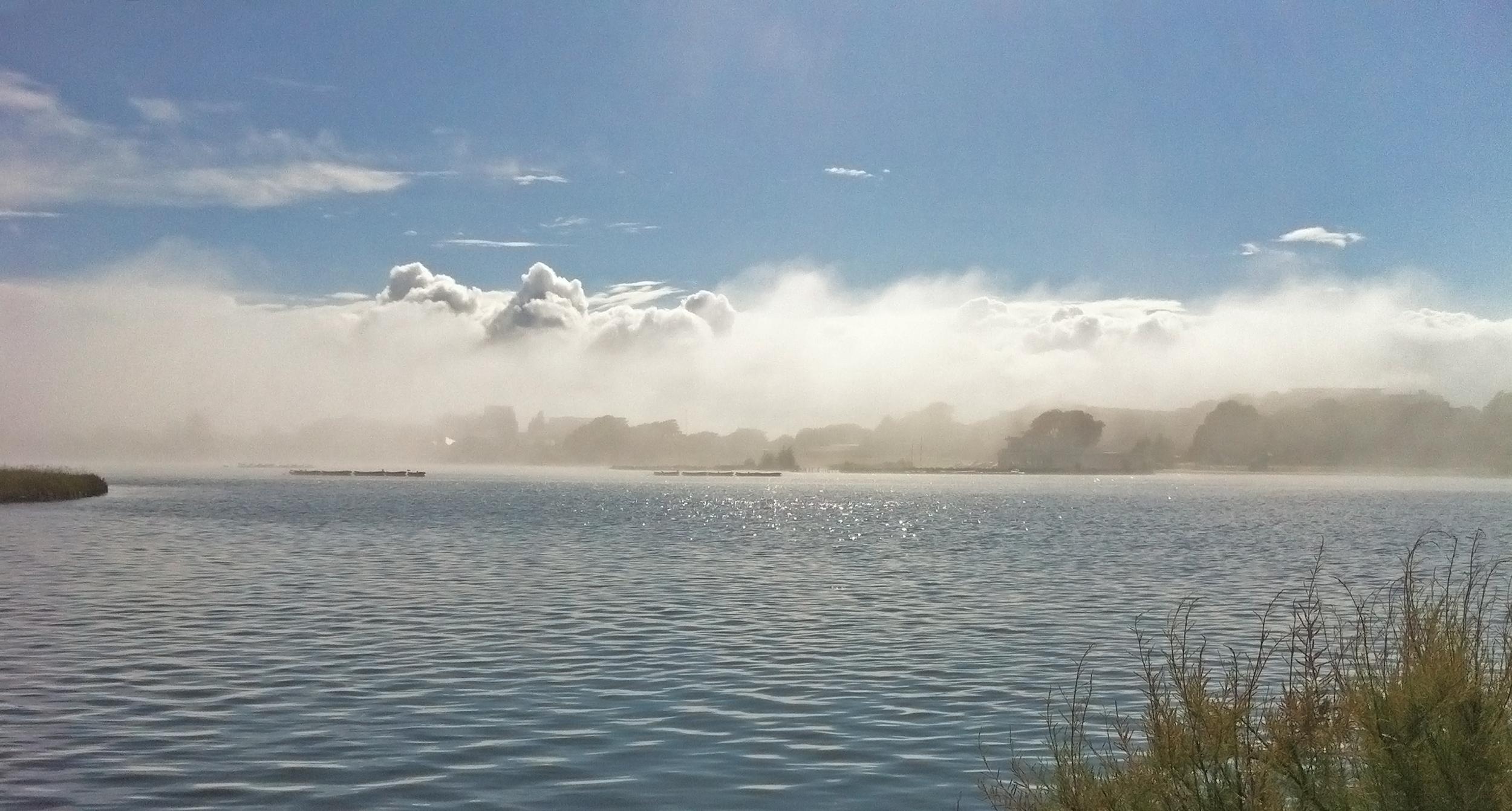 Sunshine and mist off the sea at Poole Park Lake