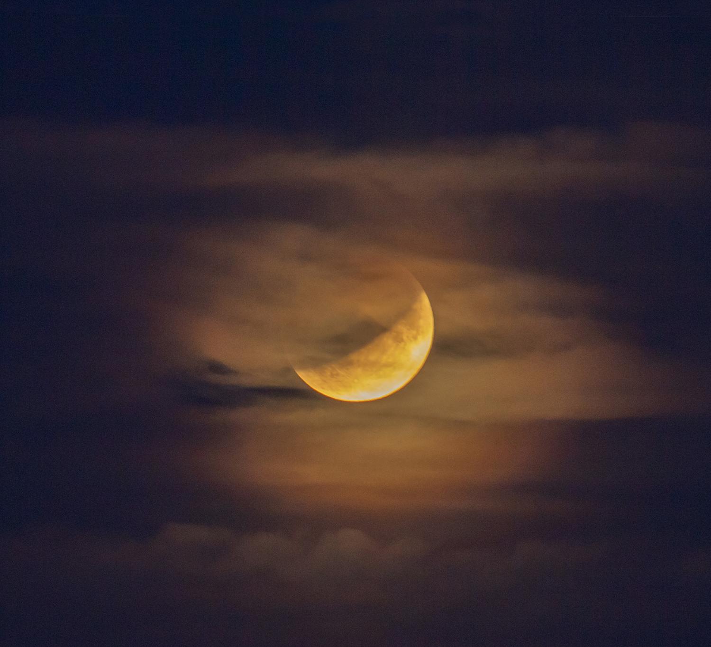 Lunar Eclipse 16.07.2019_PRP7735-72dpi crop.jpg