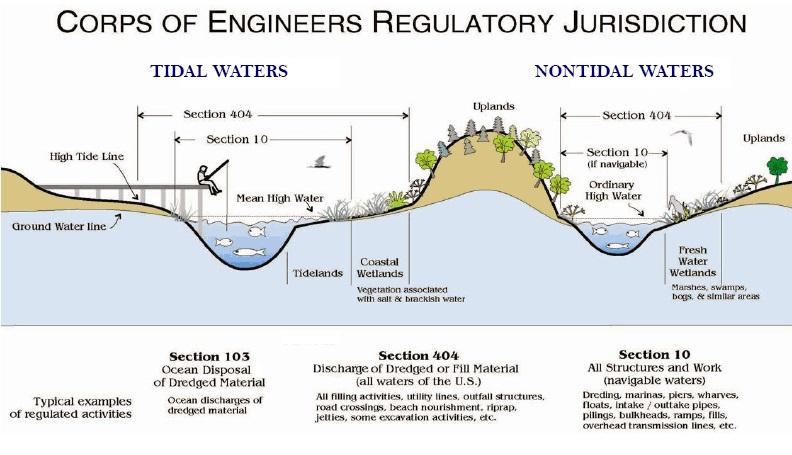 Jurisdictional Wetlands_tide_nontide2.0.jpg