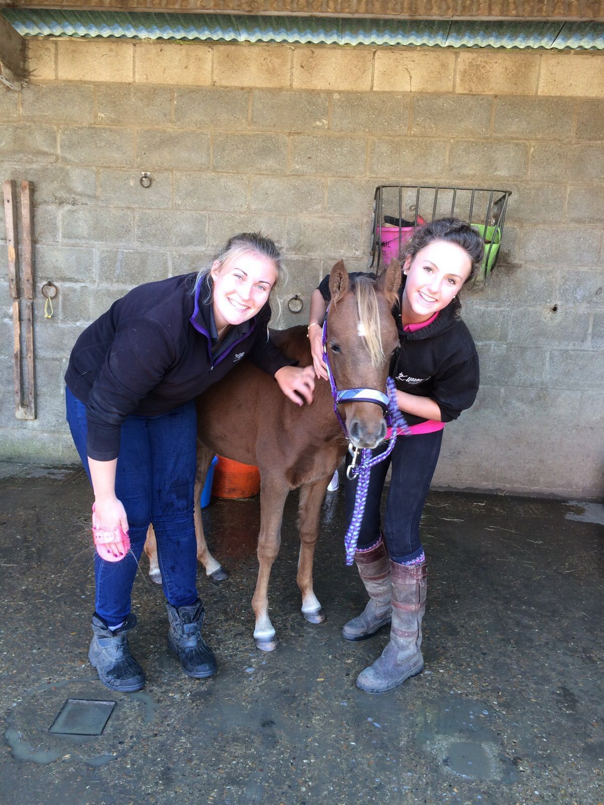 CHARLOTTE AND LAUREN WITH YOUNG FOAL EVIE