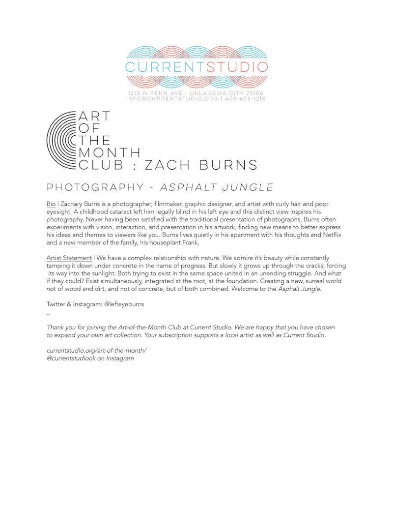 art of the month artist sheet - zach burns.jpg