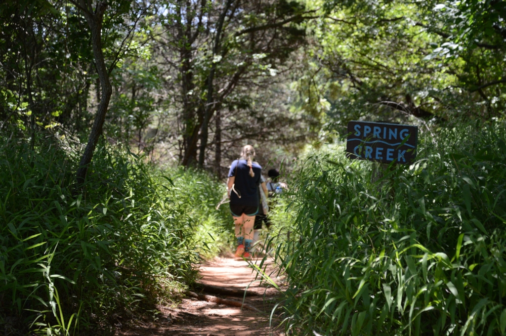 ADULT SUMMER CAMP: WORKING IN NATURE DAY