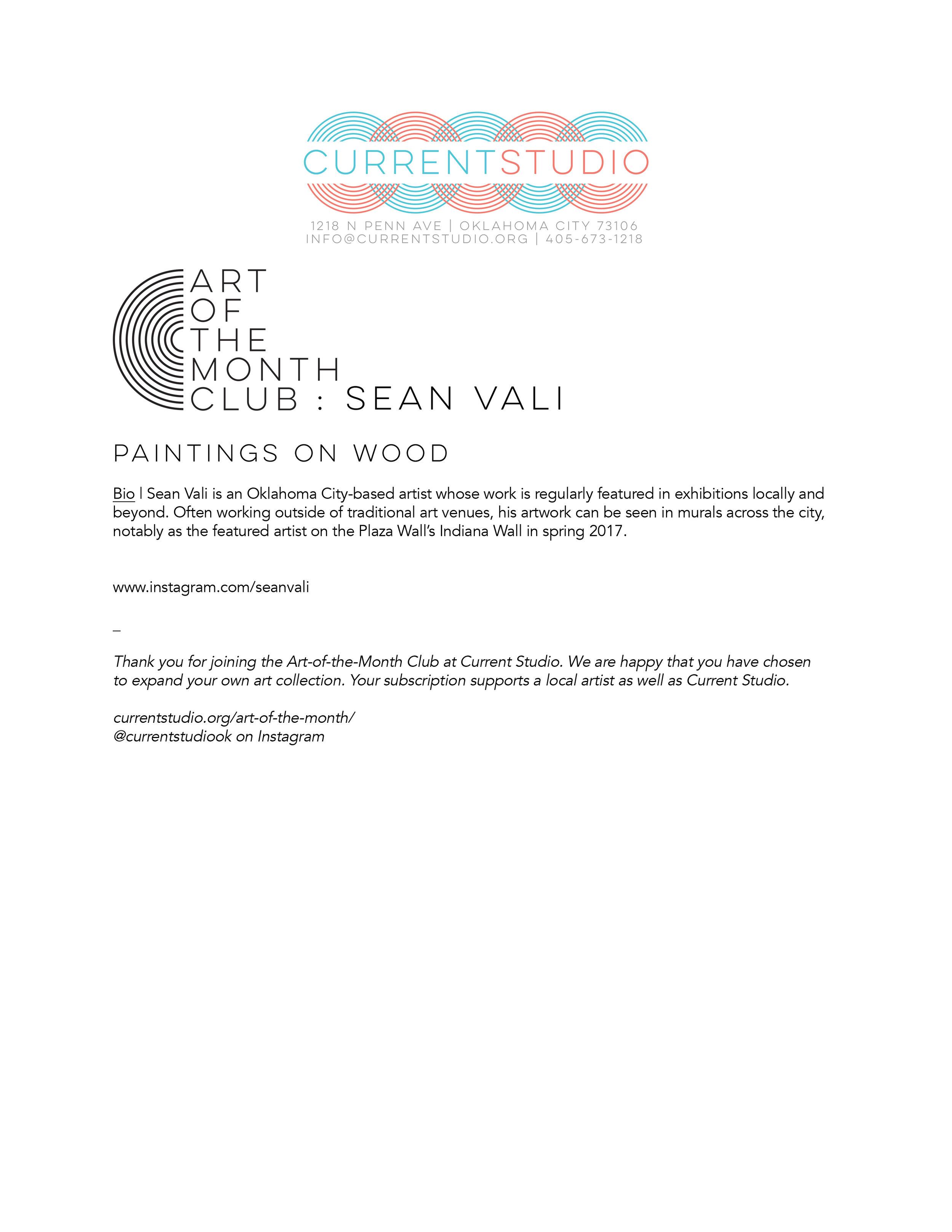 art of the month artist sheet - sean vali.jpg