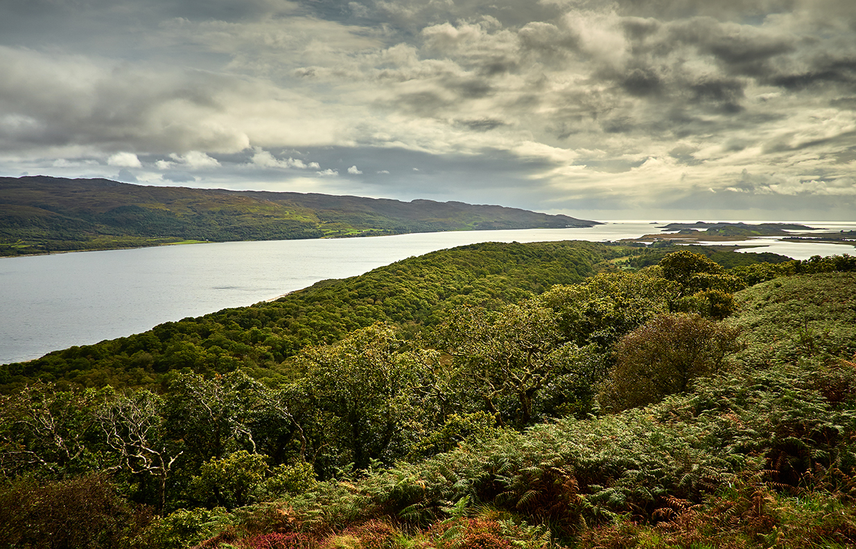 Taynish and Loch Sween.