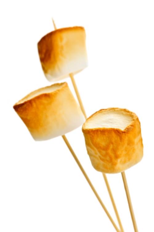 Toasted marshmallows and emotional intelligence