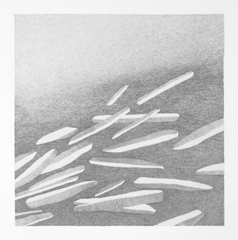 "'Etro' graphite on mylar over sintra 14 x 14"""