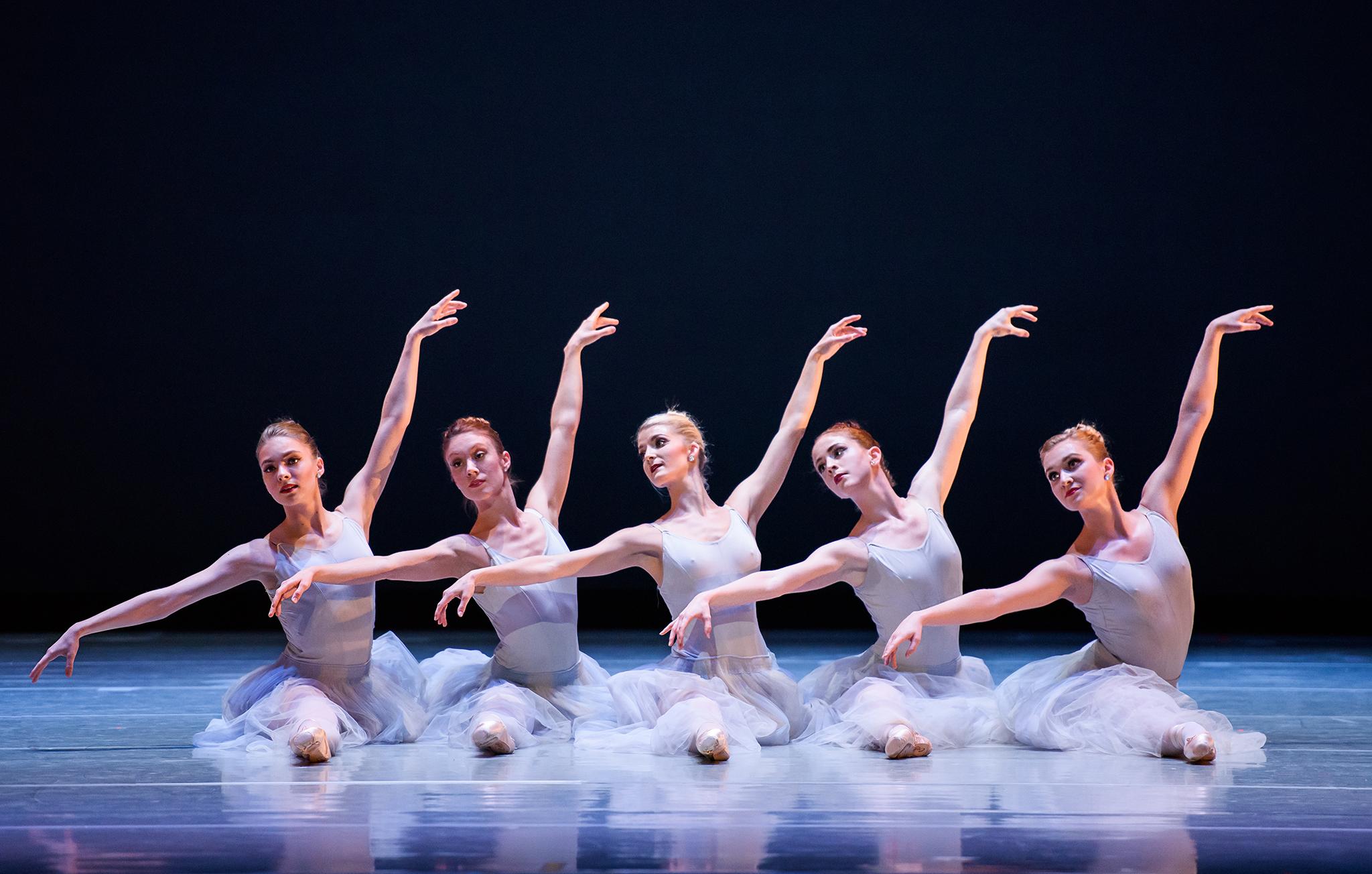 The St. Louis Ballet.