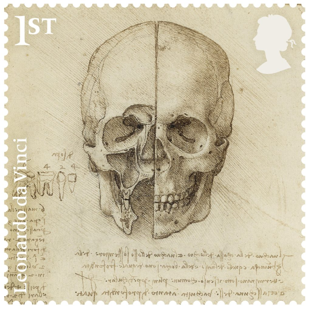 The skull sectioned (1489), on view at Ulster Museum, Belfast