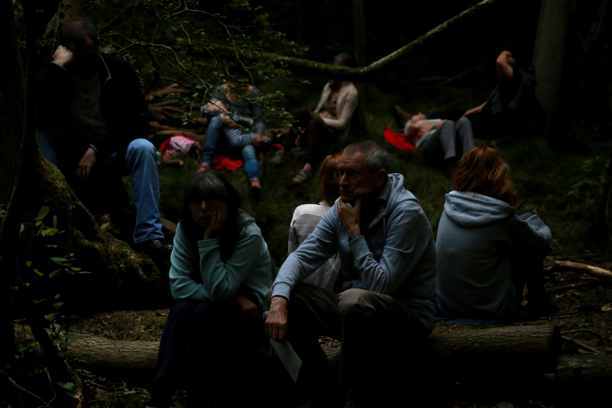 Living Symphonies Installation, Fineshade Woods, 2014