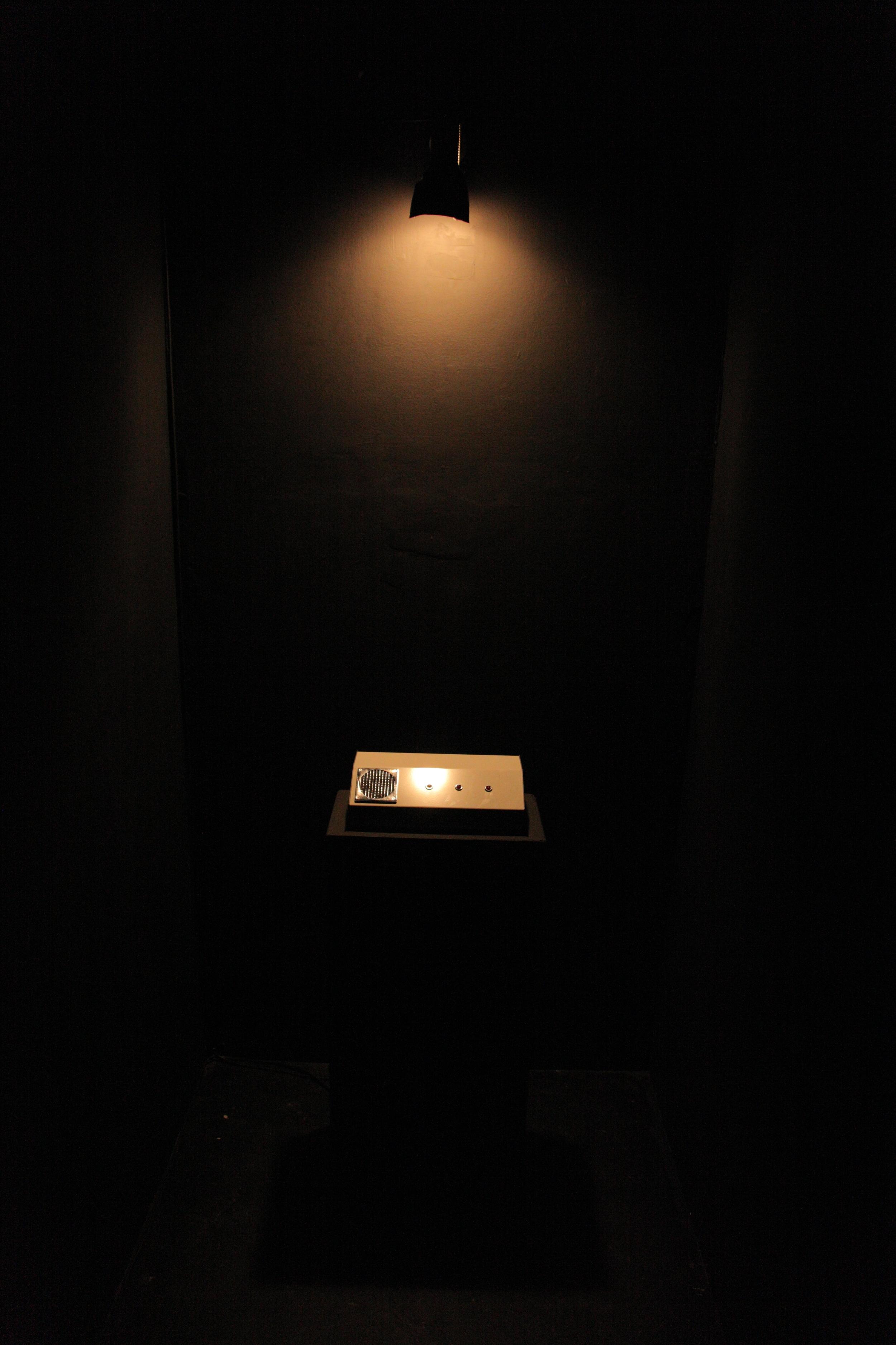 'Technotronic' by Tom Richards, Sho-Zyg, 2012