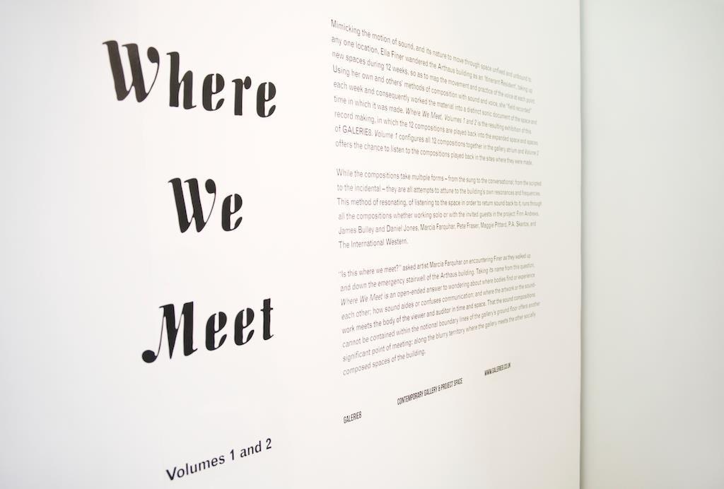 Where We Meet Volumes 1 and 2, Galerie8, 2012