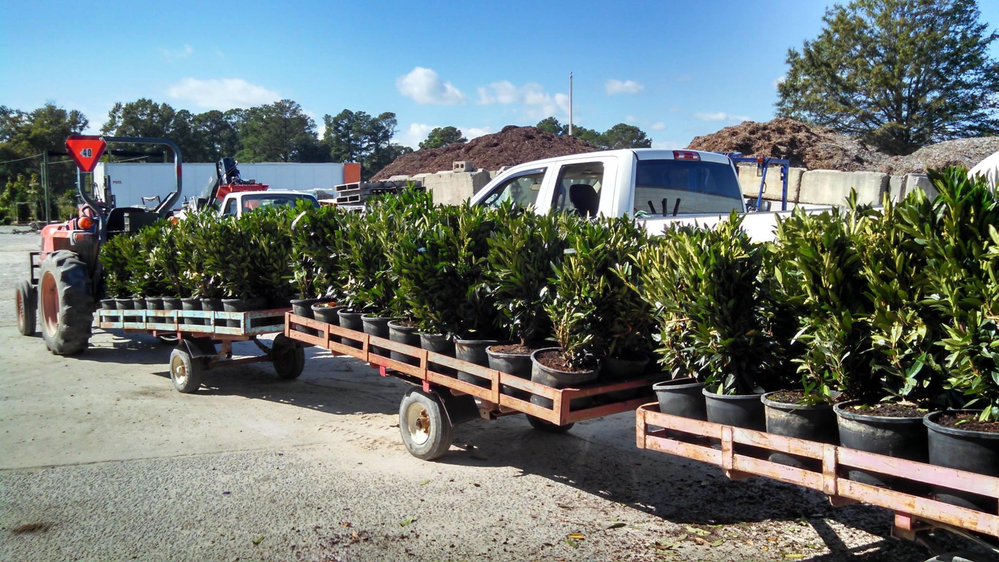 plants-trailers.jpg