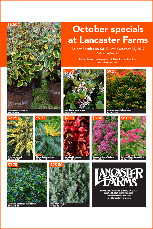 October Shrub Sale - Select shrubs are on sale all month long until supplies last. Click on the flyer to view/download.