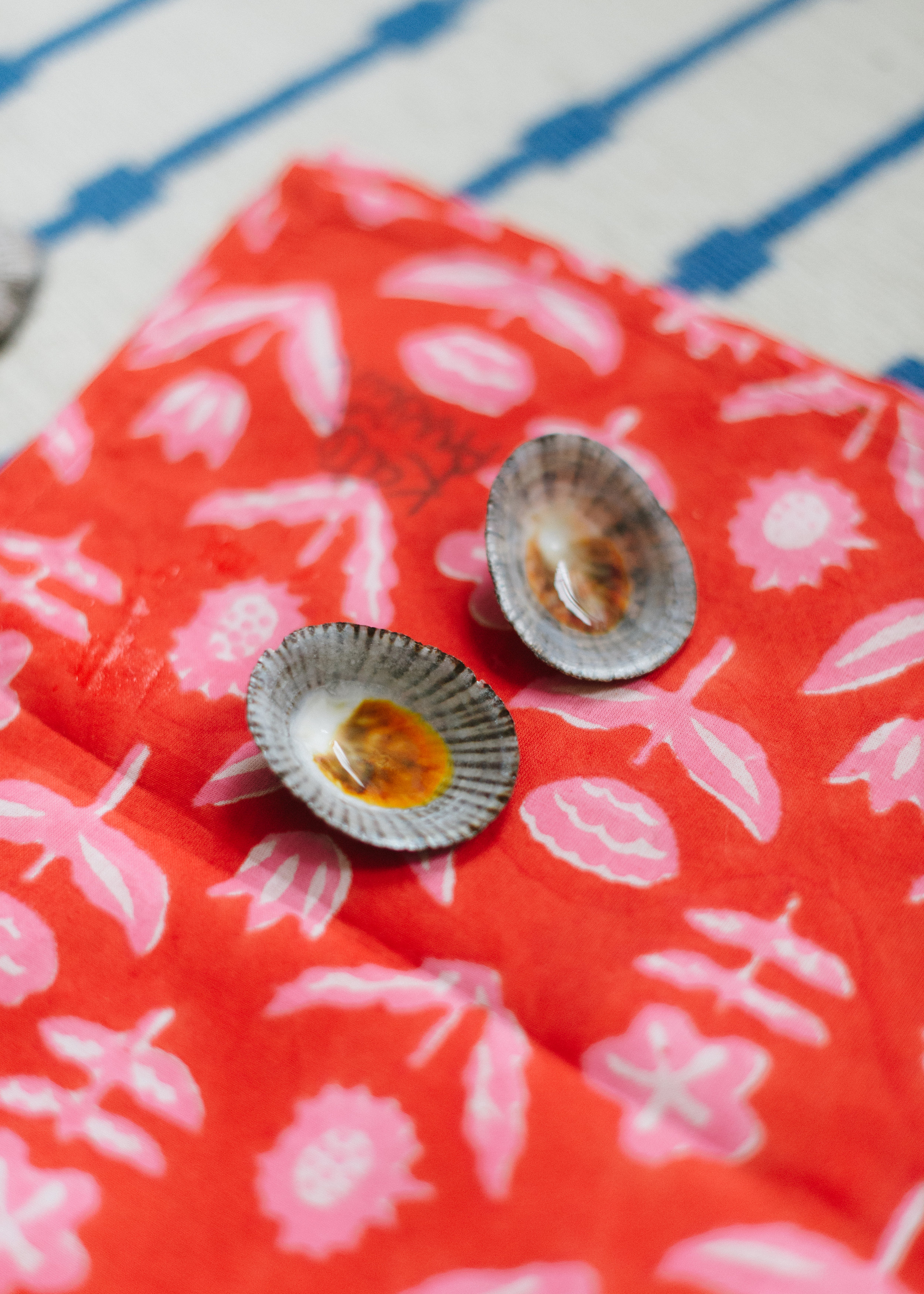 The stunning inside of the shells, laid on her  Coral Merida bandana