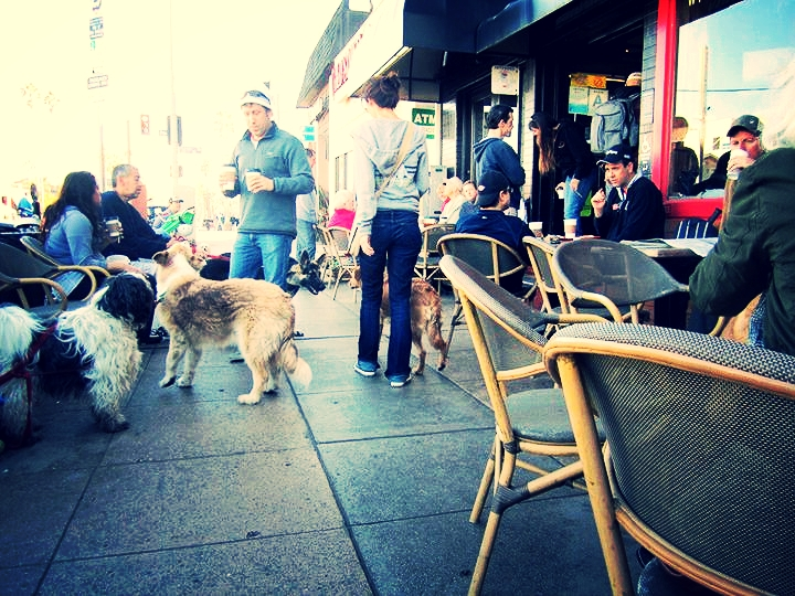 Be yourself. Bring your dog. Meet somebody you never thought it was possible to meet. (Photo thanks to Yelp.)