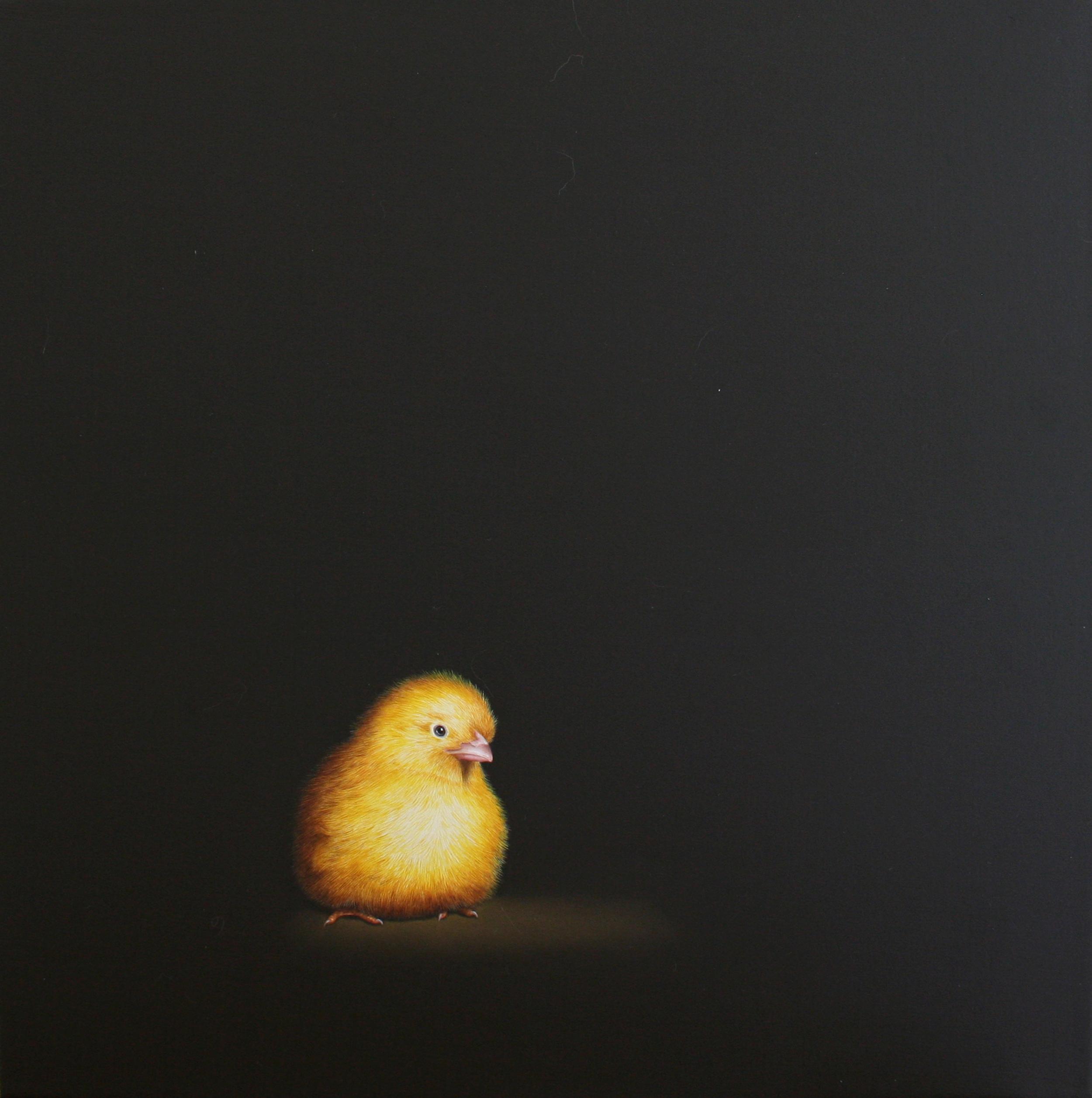 Chick2_12x12.jpg