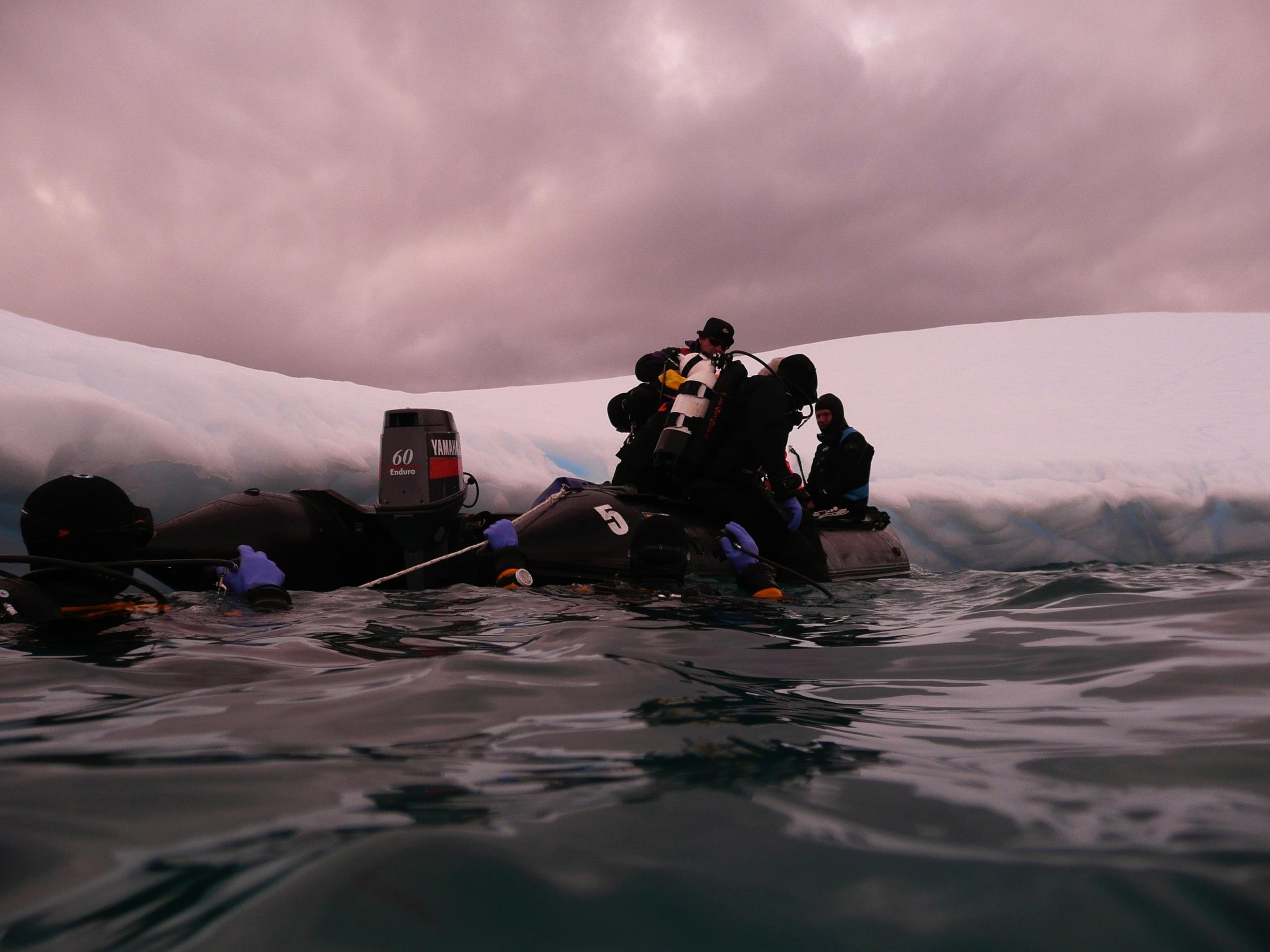 Antarctica - 5 of 33.jpg