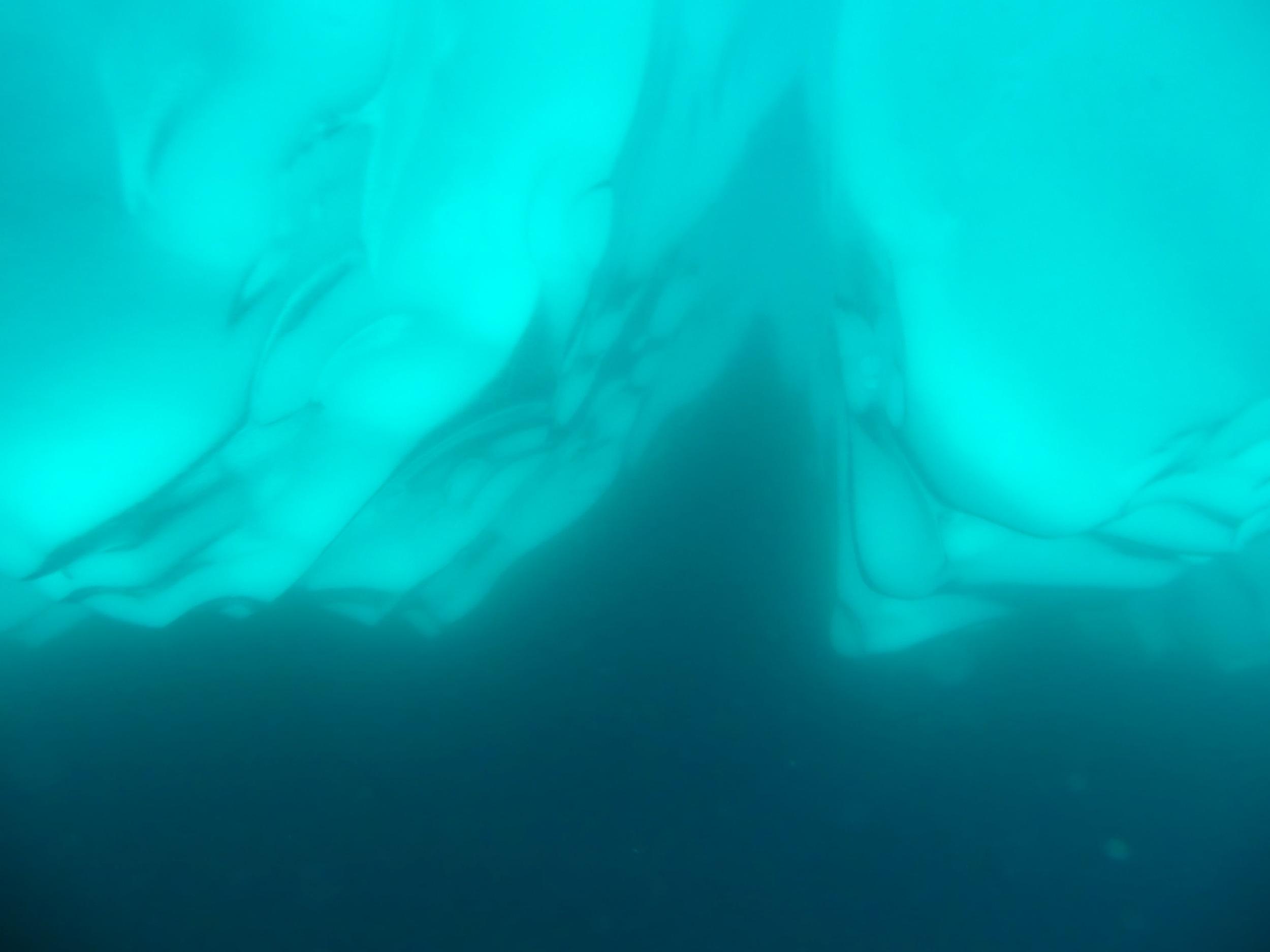 Antarctica - 8 of 33.jpg