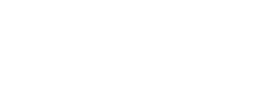 Pacekids Logo White.png