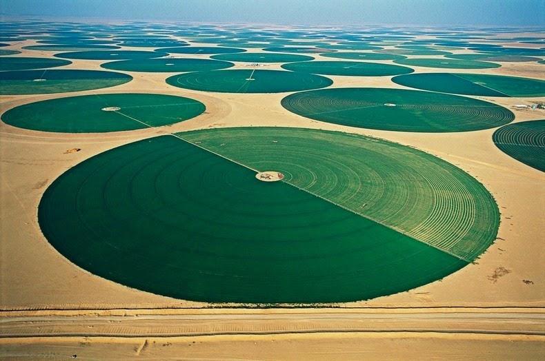 wadi-rum-farming-2.jpg
