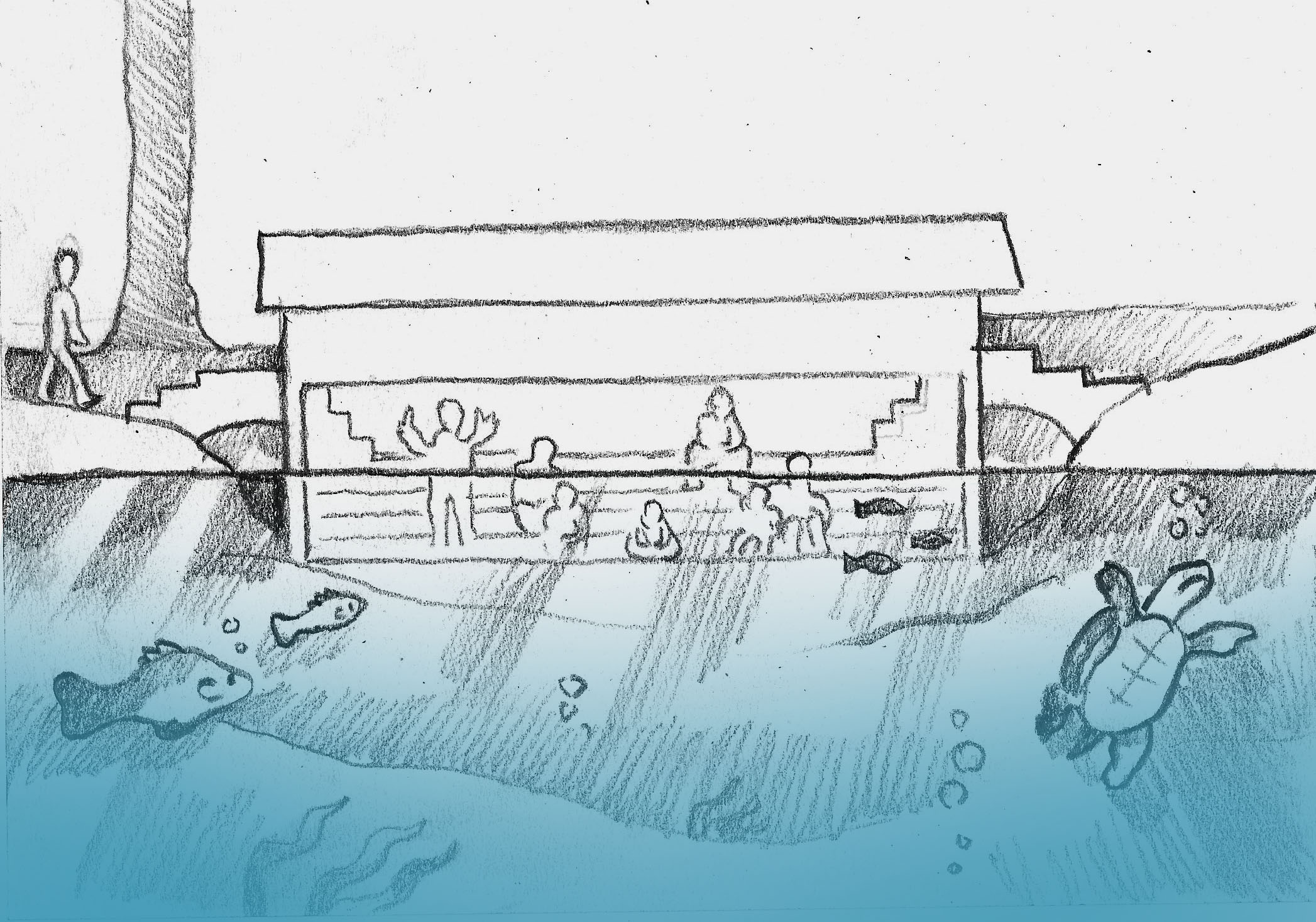 Pond Aquatic Bridge.jpg