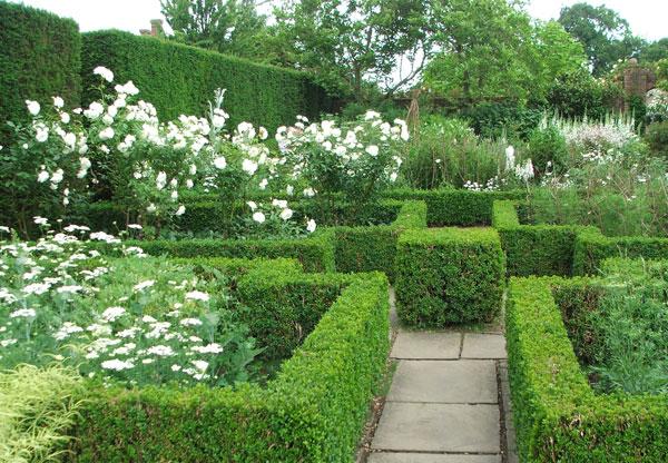 Modern American landscape design meets historical English cottage garden.