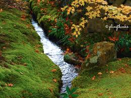 Trickling water will be enchanting and the moss carpeted floor, majestic.