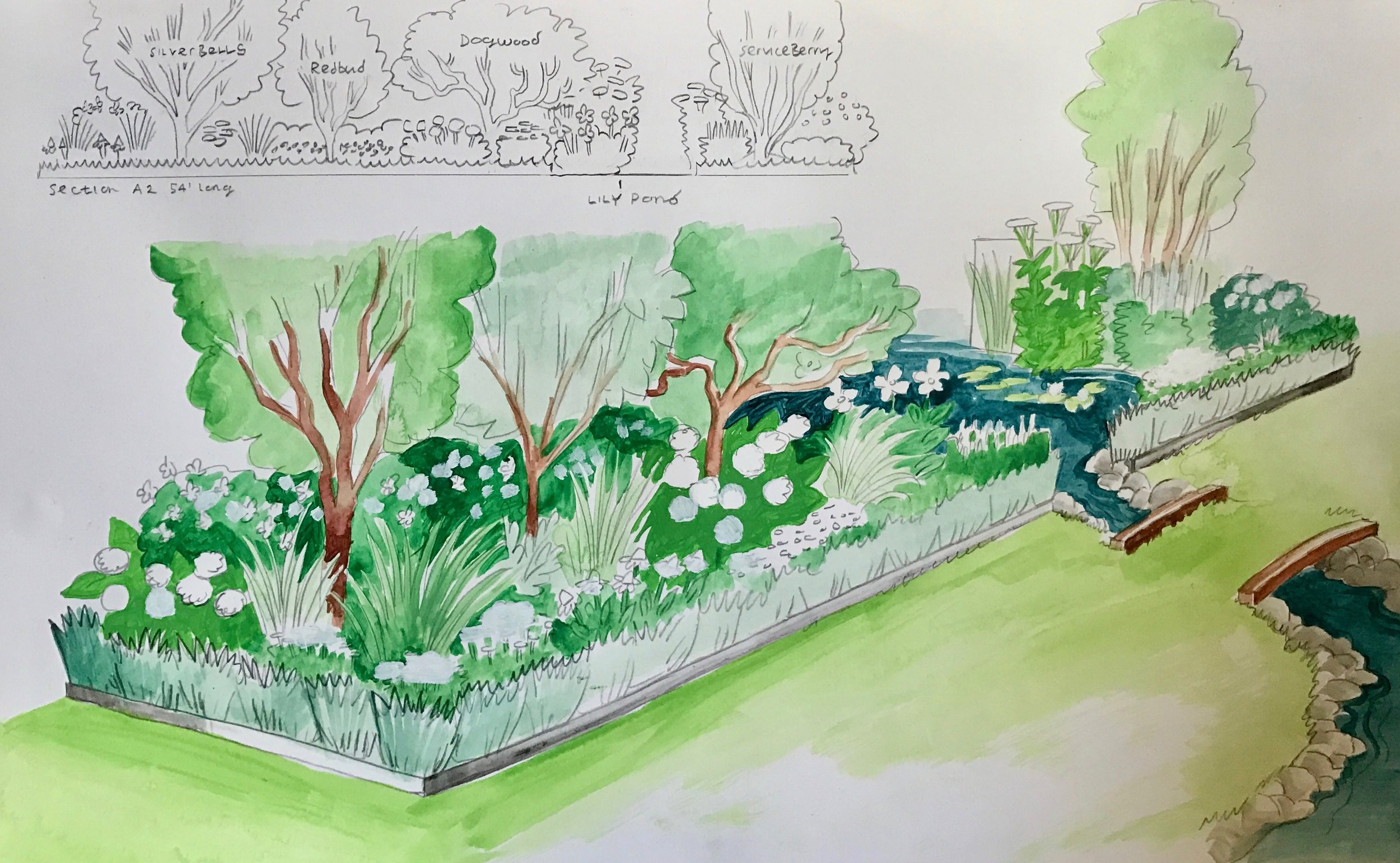 The Wedding Garden is defined by plant beds that will utilize a sophisticated composition of flowering trees, shrubs, perennials and grasses. There will be a formal edge and row of low grasses to contain a more contemporary plant arrangement. Naturalistic in deign in a similar way of the High Line.
