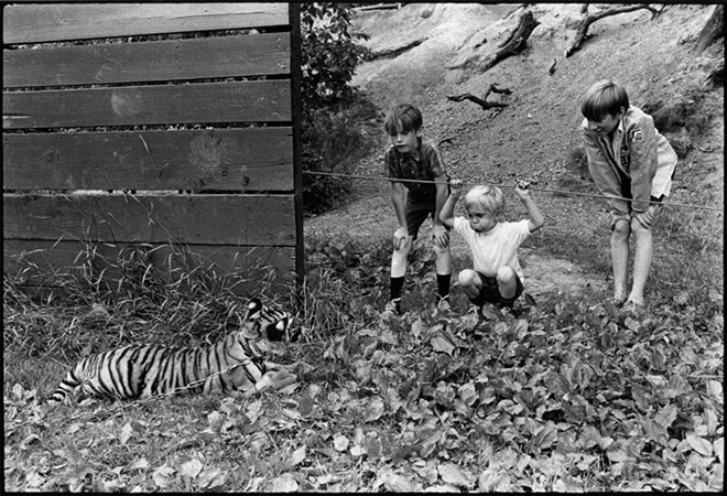 Jill Freedman - Higher Pictures