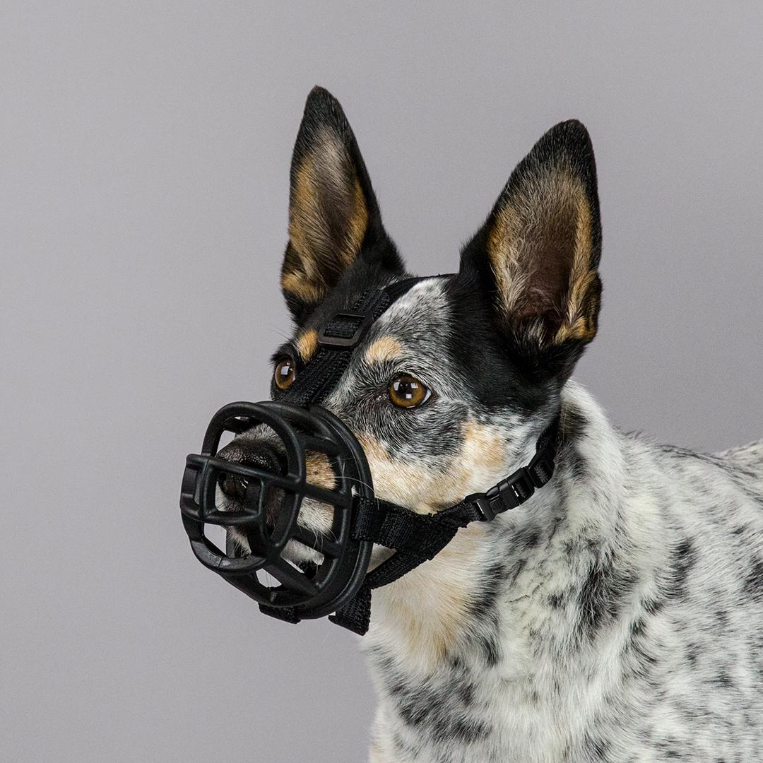 Baskerville™ Ultra Muzzle