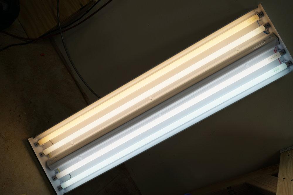 t8-fluorescent-lamps-2700k-3500k-4100k-5000k