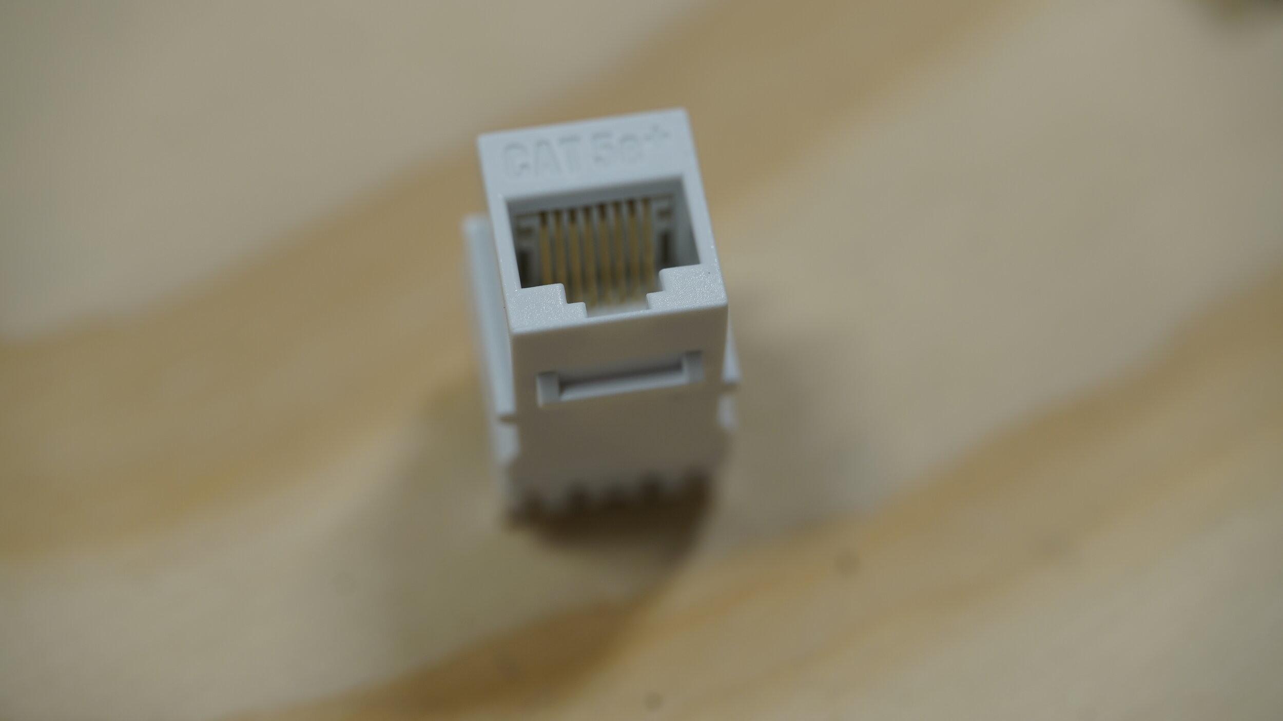 DSC00547.JPG