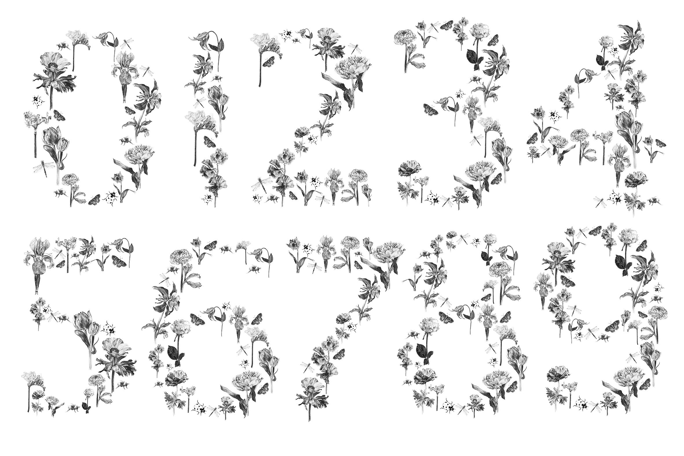 Numbers_.jpg