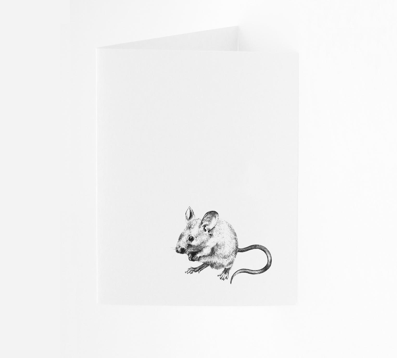 Mouse - Portrait
