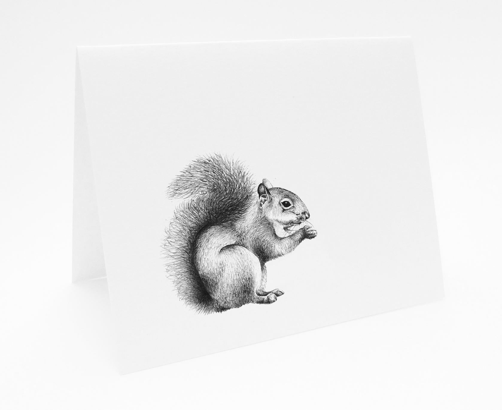 Squirrel - Landscape