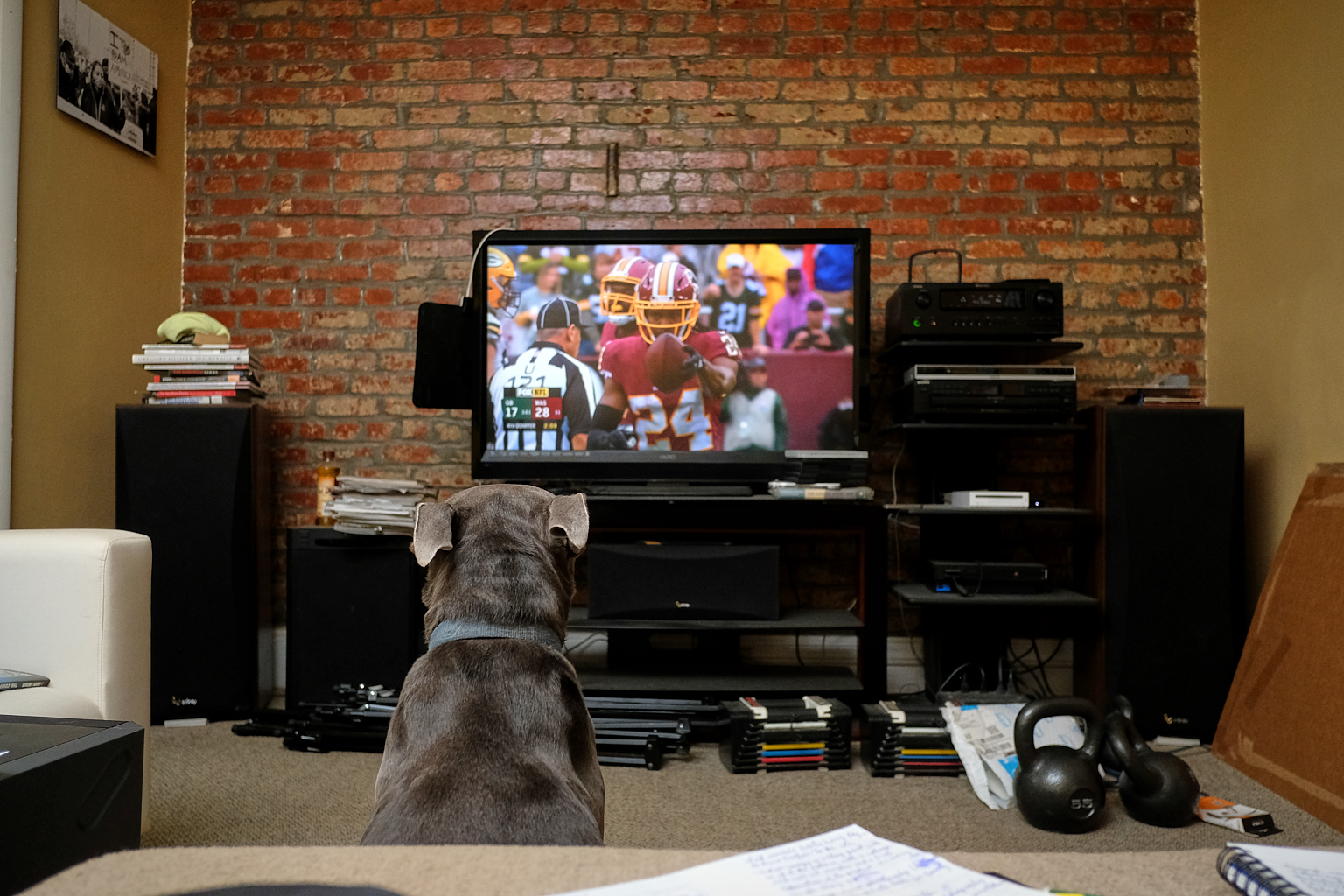 Russell_Watching_TV_2018-09-23-027.jpg