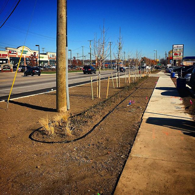 michigan-commercial-landscaping-margolis-companies.jpg