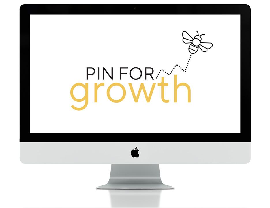 PinForGrowth_Presentation_Small.jpg
