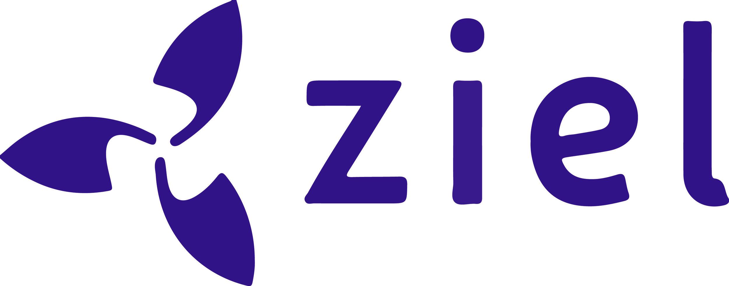 Ziel Logo 300dpi PURPLE.jpg