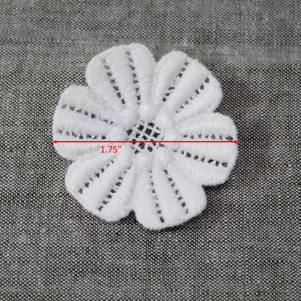 white anenome.jpg