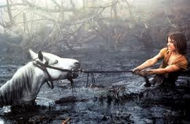 never let the sadness of the swamp overtake you
