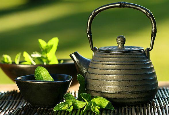 Aromatherapy Garden.JPG
