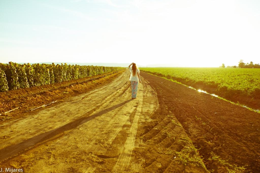 DSCF5533 - Boho Sunflower Shoot - Isabel Yesteryear - web.jpg