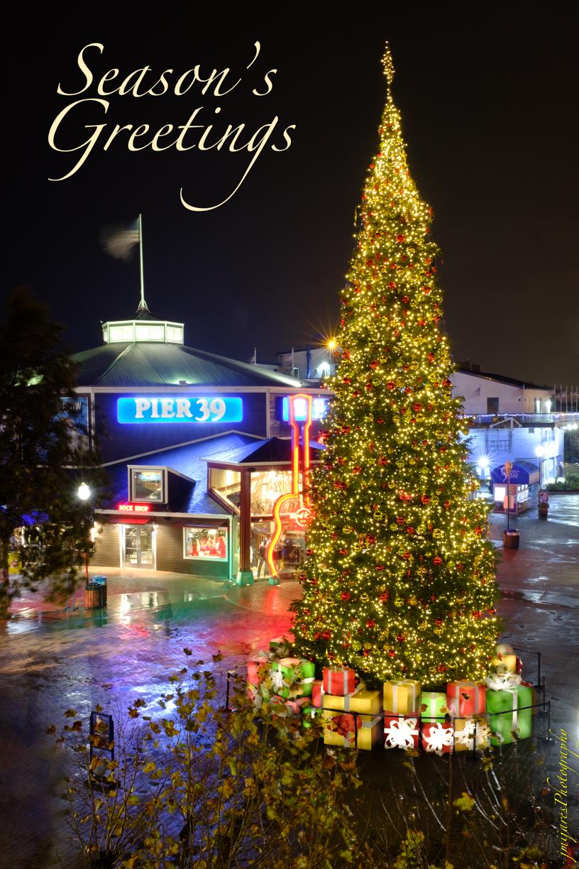 XH1B6041-Edit-2 - Christmas2018.jpg