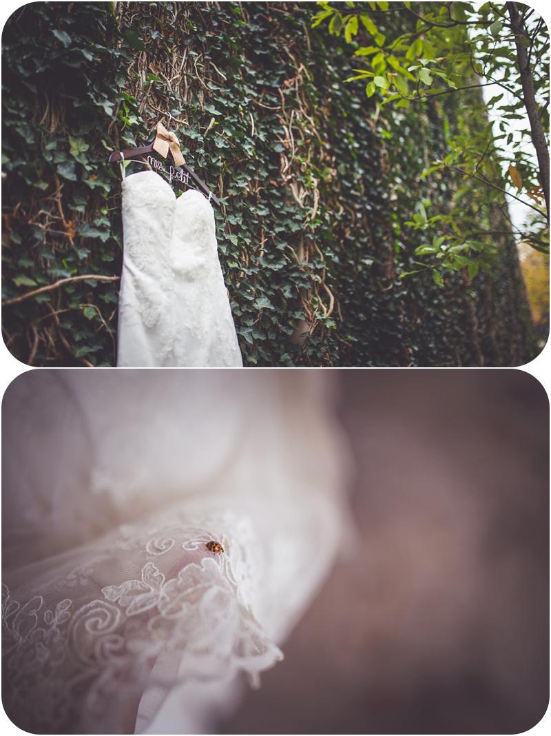 wedding dress details, ladybug on wedding dress photos, fasig tipton