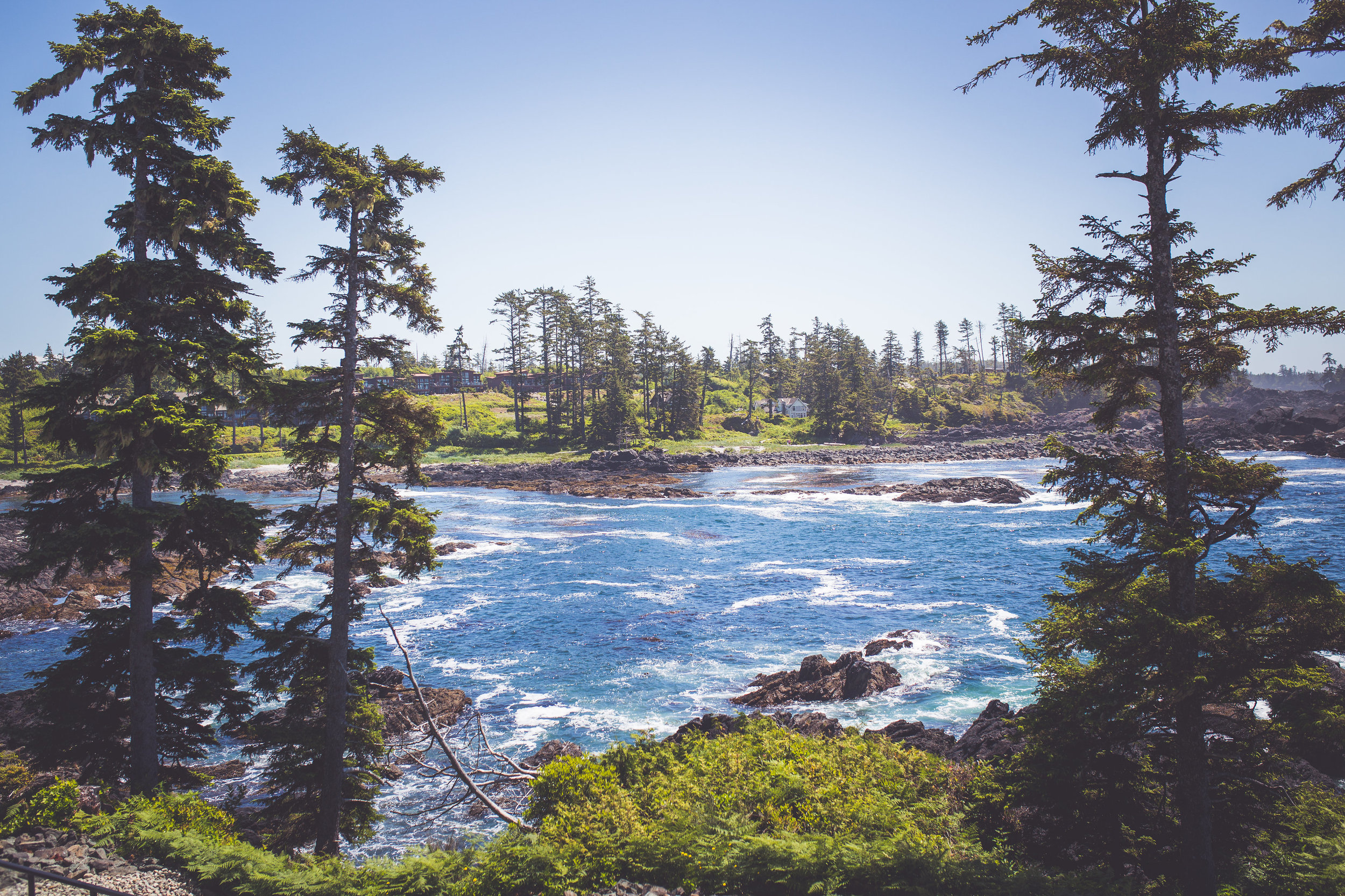 black-rock-oceanfront-resort-weddings-ucluelet-bc-courtney-jake-21.jpg