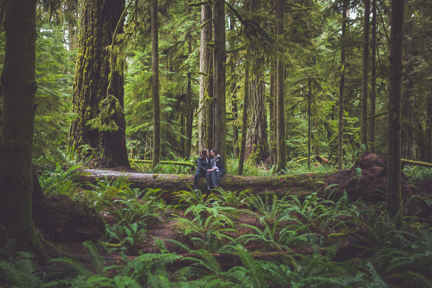 cathedral-grove-elopement-photos-29.jpg