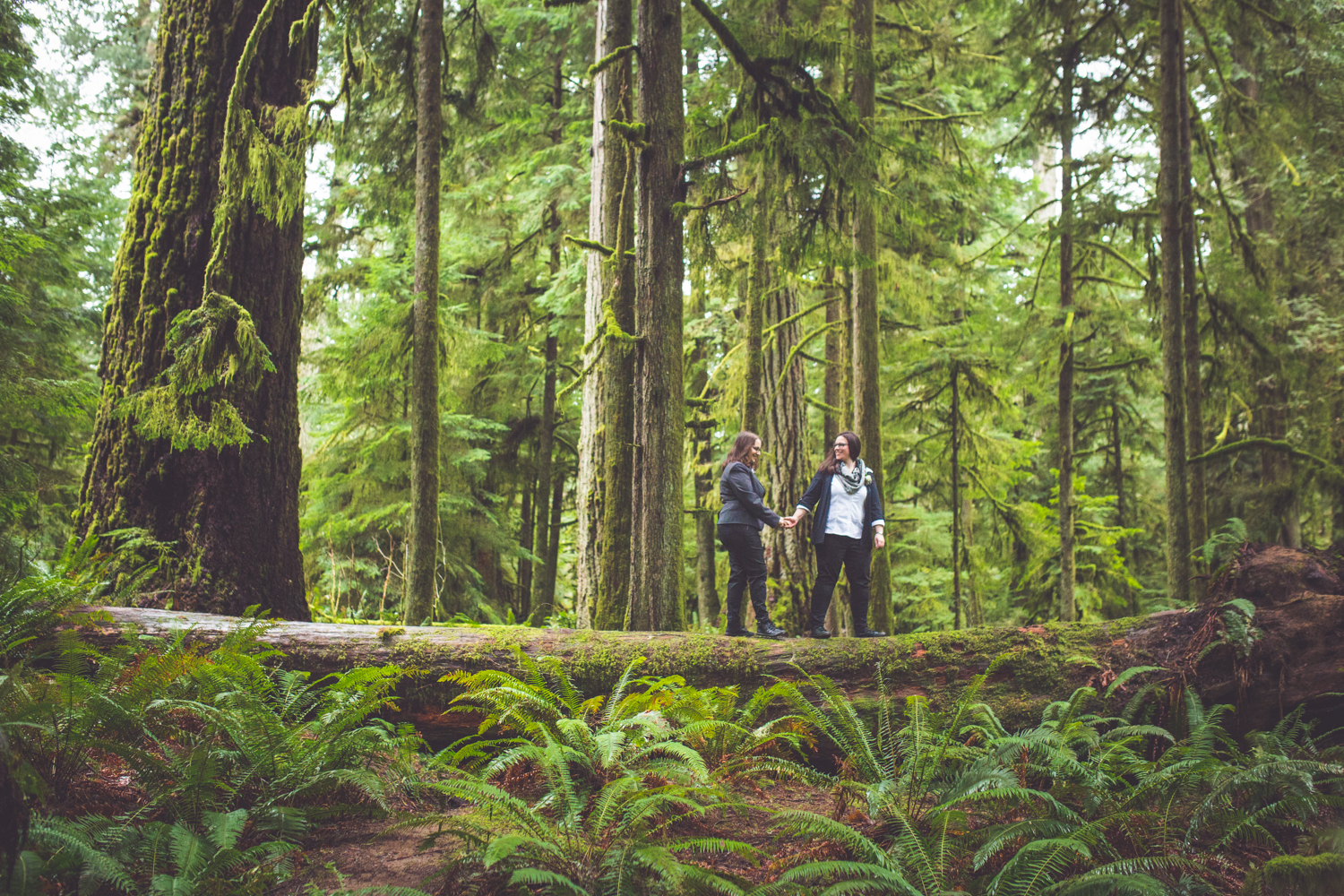 cathedral-grove-elopement-photos-27.jpg