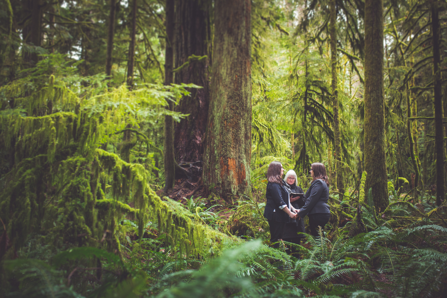 cathedral-grove-elopement-photos-20.jpg