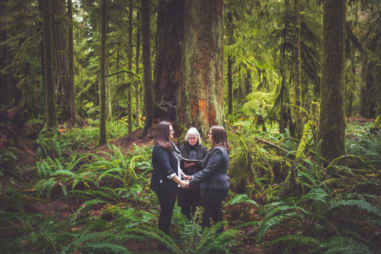 cathedral-grove-elopement-photos-16.jpg